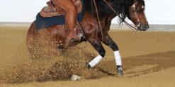 Western-hevosille suunniteltu rehu